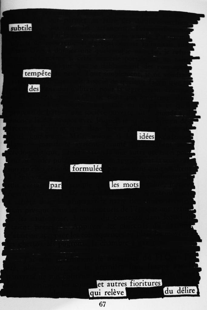 « Subtile tempête des idées formulée par les mots et autres frioritures qui relève du délire »