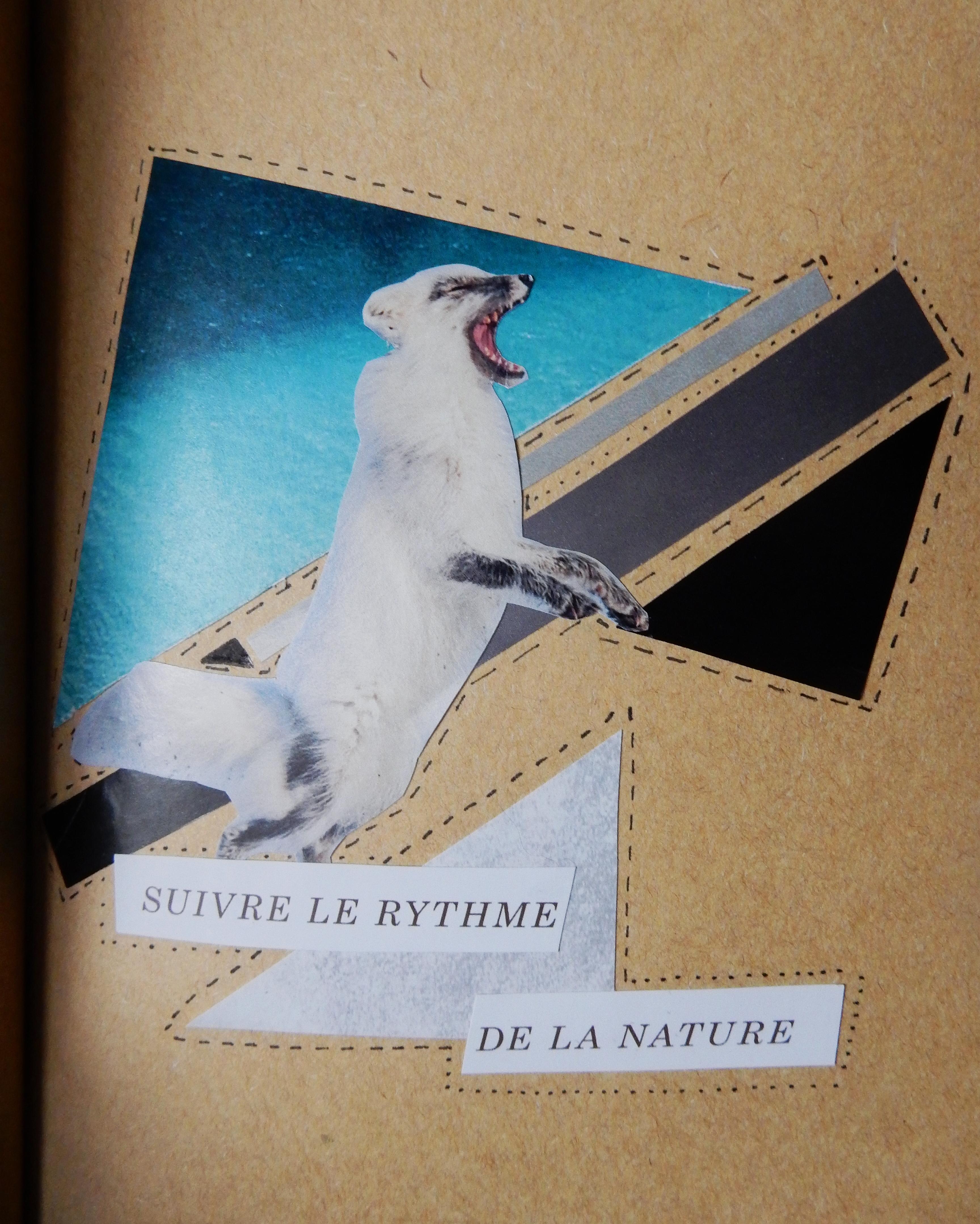 Collage papier : renard arctique et formes géométriques dans les tons de bleus, noirs, gris et blancs. On peut lire « Suivre le ryhtme de la nature » au bas.